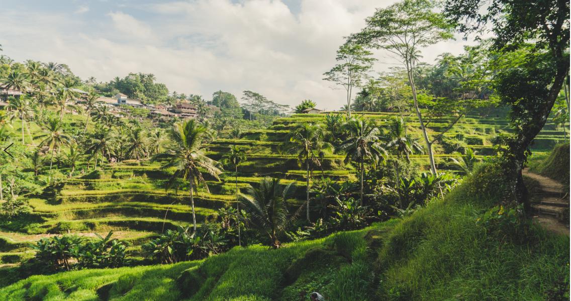 Mjesta za upoznavanje u Indoneziji